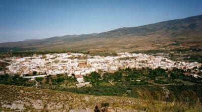 BALANCE DEL C.E.A. EN 2008